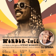 Groovin in the Park w/ DJ Spinna's Wonder-Full Party (FREE Event)